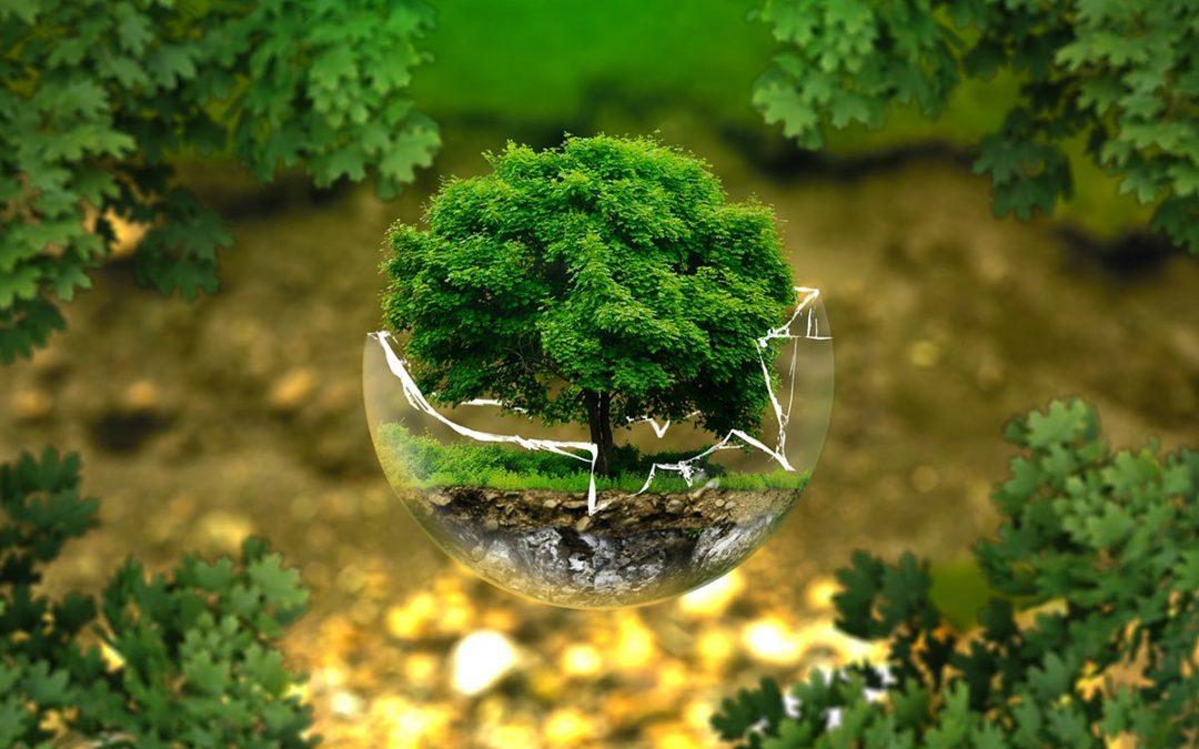 """Aportaremos nuestra visión al """"Plan Nacional de Salud y Medio Ambiente"""""""